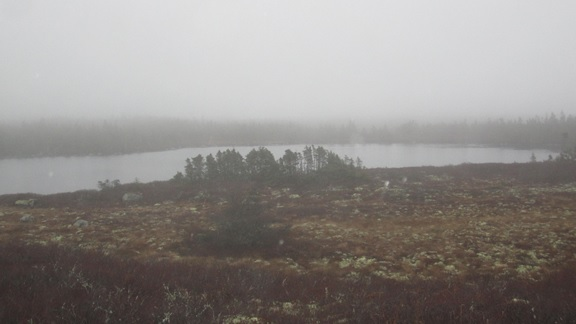 Gerry Madigan photo archive…on a wet, foggy, cold damp day November 2015